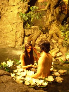Adam and Eve Awakening Everlasting