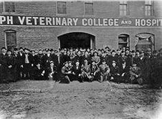 Joseph Veterinary College in St. College Image, Veterinary Colleges, Kansas State University, Veterinary Medicine, St Joseph, British, History, Saint Joseph, Historia