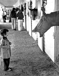 Four-year-old Diana Bane of Omaha gets an earful at the Ak-Sar-Ben stables on April 27, 1975. The little fan came to the tracks for an open house, meant to preview the upcoming racing season. THE WORLD-HERALD