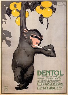 ¤ Ad for Dentol toothpaste. Aleardo Terzi - Dentol, G.B. DOLORA, Milano,1914. Nice little monkey hanging from a tree, brushing his teeth.