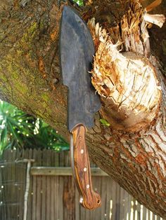 Wood Cleaver, Brian Dolim, 2015
