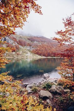 Fall camping looks a lot like this....Breath taking!
