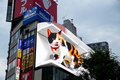 Found opposite Shinjuku Station's east exit, the larger-than-life cat will take a nap, wake up and look at passersby Time Out Tokyo, Tree Tent, Giant Cat, Cat Online, Welcome To The Future, Sci Fi Movies, Take A Nap, Pedestrian, Magazine Art