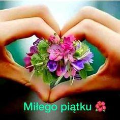 fm : Home Angel, Flowers, Pictures, Night, Sweet, Messages, Rolodex, Buen Dia, Rose Arrangements