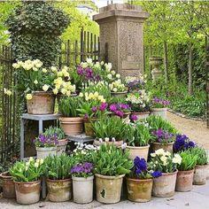 50 Stunning Spring Garden Ideas for Front Yard and Backyard Landscaping – Garten Ideen Back Gardens, Small Gardens, Outdoor Gardens, Garden Cottage, Garden Pots, Potted Garden, Potted Plants Patio, Planters, Herbs Garden