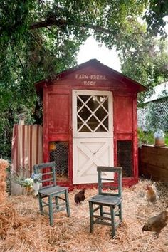 10 Chicken Coops That Will Make You Want To House Hens (PHOTOS)