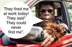 Bigfoot Pics, Bigfoot Pictures, Bigfoot Sasquatch, Ufo Stories, Bizarro Comic, Finding Bigfoot, Extinct Animals, Work Today, Twisted Humor