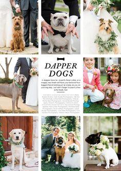 #ClippedOnIssuu from http://issuu.com/southernweddings/docs/southern_weddings_volume_7_digital/c/sm8sgpd