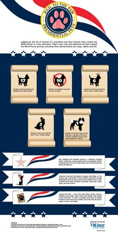 Judging by the list of animals U.S. presidents have owned, the White House is a very wild place. #Infographic #pets #politics