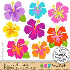 Hibiscus clipart Happy hibiscus Clip art by basicpixels on Etsy Hawaiian Flowers, Hibiscus Flowers, Hibiscus Clip Art, Bottle Cap Images, Flower Clipart, Stained Glass Patterns, Luau, Art Images, Craft Projects