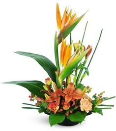 Graceful, cheerful, and wonderfully dazzling! This modern-style arrangement is a sure winner.Stunning, tall birds of paradise stand out among lilies, spra… Exotic Flowers, Orange Flowers, Tropical Flowers, Tropical Flower Arrangements, Vase Arrangements, Centrepieces, Corporate Flowers, Sympathy Flowers, Floral Arrangements