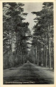 Groenendaalseweg 1954