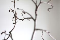 muotoseikka\: Ruokailutila - kodin komentosilta / The heart of the home