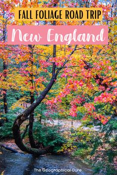 Planning a road trip in New England? Fall is the perfect time to visit this historic area on the East Coast USA. This New England travel guide gives you a 7 day road trip itinerary for seeing the best Fall foliage in New England. In one week, you'll discover the best fiery Fall colors, where to stay and eat, the top Fall hikes, and photography inspiration. You'll start in the historic New England city of Boston and then head to the Berkshires, Vermont, and New Hampshire. East Coast Road…