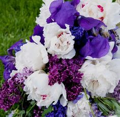 Peonies, Iris and Lilacs bloom in spring and make wonderful cut flower bouquets to bring indoors.