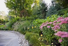 Pictures of best landscaping shrubs and bushes for front and backyard designs. DIY plans with simple landscape design ideas using most popular shrubs bushes an Affordable Backyard Ideas, Backyard Design, Hardscape, Landscape Design, Backyard Pool Landscaping, Backyard Trees, Yard Design, Hillside Landscaping, Backyard