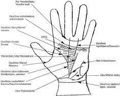 Čtení z ruky: Pravá dlaň věští osud, levá budoucnost Witchcraft, Peace, Angel, Cook, Fitness, Recipes, Palmistry, Witch Craft, Recipies