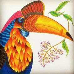 Inspirational Coloring Pages by @madam_key #tropicalwonderland #milliemarotta #paraisotropical #livrosdecolorir #adultcoloring #coloringbooks