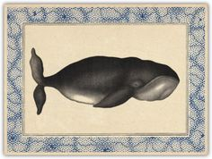 Paperless Post - Bowhead Whale