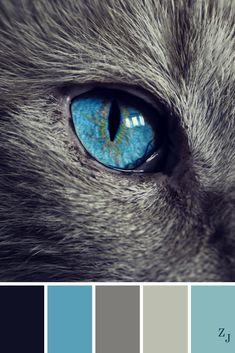 ZJ Colour Palette 515 #colourpalette #colourinspiration