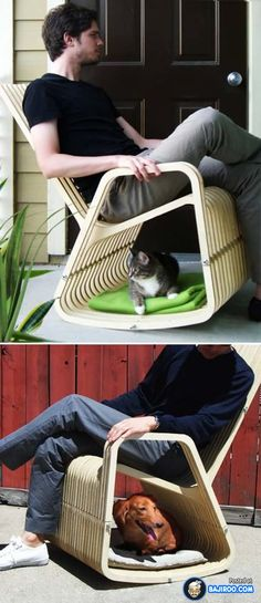 amazing creative unusual pets friendly furniture designs interionr ideas pics images pictures photos 30 41 Pictures Of Awesome Pet Friendly Furniture