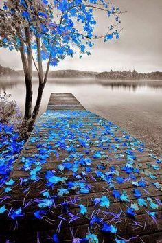 Manejemos los cambios con alegria y tranquilidad