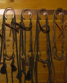 bridle rack - Google Search
