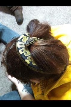 Jackie O, the best hair accessory    My Normal Ball Python