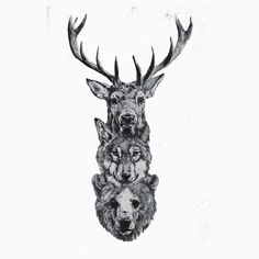 Totem tattoo i wanted a bear and a stag tattoo this combines them both perfectly, essa ideia é incrível! Totem Tattoo, Orca Tattoo, Hamsa Tattoo, Tattoo Thigh, Tattoo Wolf, Deer Tattoo, Animal Thigh Tattoo, Male Tattoo, Future Tattoos