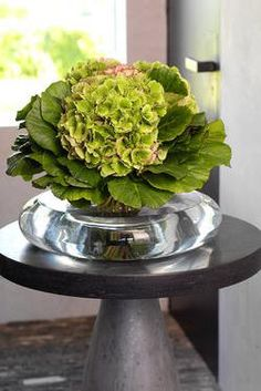 Tropical Flower Arrangements, Tropical Flowers, Art Floral, Bouquet, Green Hydrangea, Ikebana, Sophisticated Style, Natural Texture, Flower Decorations