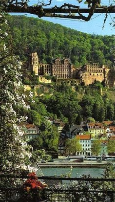Heidelberg, Germany                                                                                                                                                      More
