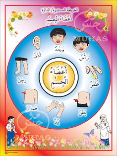 I THINK BAHASA ARAB: PETA I THINK BAHASA ARAB Body Parts Preschool, Teaching Kids Respect, School Cartoon, Arabic Lessons, Arabic Alphabet, Arabic Language, Learning Arabic, Montessori Activities, Peta