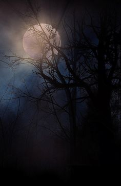 """"""" moonlight disappears down the hills mountains vanish into fog and i vanish into poetry,. Beautiful Nature Wallpaper, Beautiful Moon, Beautiful Landscapes, Moonlight Photography, Moon Photography, Moon Photos, Moon Pictures, Shoot The Moon, Good Night Moon"""