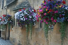 hanging baskets.