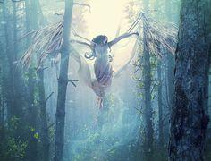 Creative Digital Art by Erimu Mystical World, Fantasy Art Women, Danse Macabre, Forest Fairy, Creative Photos, Whimsical Art, Fantasy Creatures, Photo Manipulation, Faeries