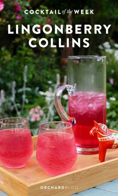 Lingonberry Collins Cocktail for Midsummer Book Club Menu, Book Club Food, Vodka Collins, Vodka Cocktails, Summer Cocktails, Refreshing Drinks, Yummy Drinks, Cheers, Health