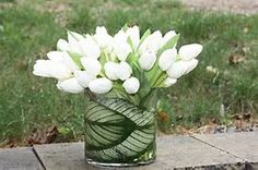 Tulips were introduced to Europe in the mid-16th century. The first European tulip was described in 1559 in a Bavarian garden by a then-famous Swiss naturalist.