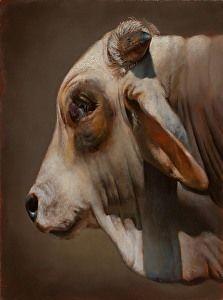Brahman by Teresa Elliott in the FASO Daily Art Show