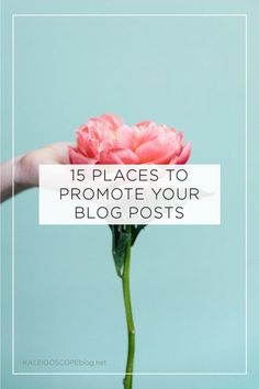 I guess there are a myriad of ways to promote your blog posts, ways that I never even knew about!