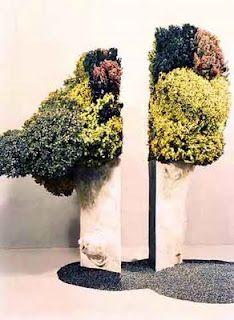 Surrealist Ikebana - Sofu Teshigahara
