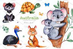 "by Kate_Rina on ""AUSTRALIA"" cute watercolor collection! Watercolor collection with 52 separate elements : cute animals (Koala, kiwi bird, Australian Nursery, Australian Animals, Australian Art, Bird Drawings, Animal Drawings, Bird Drawing For Kids, Cassowary Bird, Kiwi Bird, Tasmanian Devil"