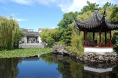 Sun Yat-Sen Classical Chinese Garden in Vancouver, BC Chinese Garden, Pacific Northwest, North West, Botanical Gardens, Vancouver, Bucket, Bloom, China, Sun