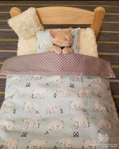 Cats Wallpapers ✧ Kittens Cutest, Cute Cats, Peach Bedding, Cotton Bedding Sets, Cat Room, Cat Wallpaper, Baby Girl Blankets, Bed Sheet Sets, Cat Furniture