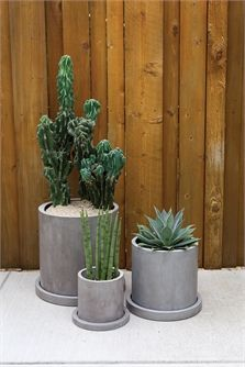 In clean grey concrete, the Marta Pot is perfect for large plants and features a drainage hole and saucer with a contemporary shape. This planter is designed for outdoor use, but can also be used in modern home decor. Large: x x X-Large: x x Large Plants, Potted Plants, Flower Pots, Flowers, Concrete Planters, Contemporary, Modern, Accent Decor, Floral Arrangements