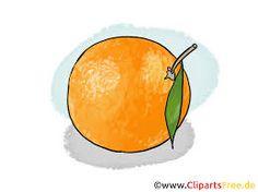 """Résultat de recherche d'images pour """"clipart gratuit oranges"""""""