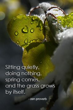 Zen Proverb Sitting quietly doing nothing spring comes and the grass grows by itself Quotes Wallpaper For Mobile, Citation Zen, Zen Quotes, Wisdom Quotes, Zen Sayings, Namaste Quotes, Quotable Quotes, Life Quotes, Inspirational Quotes Wallpapers