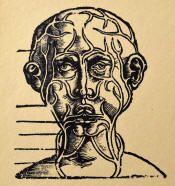 Author: Walter Hermann Ryff (1500-1548) Book: Die Kleyner Chirurgei