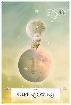 images, Wisdom of the Oracle Divination Cards: Ask and Know by Colette Baron-Reid - Google Search
