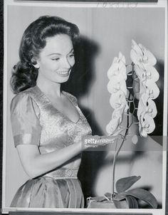 Actress Ann Blyth admires an orchid named for her by producer, Arthur Freed, who developed it. The 'Ann Blyth' orchid recently won two top honors in the Southern California Orchid Growers Association Competition. Miss Blyth is starred in Freed's production of Kismet.