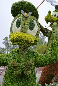 Donald by disneylori, via Flickr